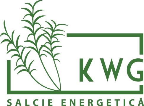 KWG – Salcie Energetică